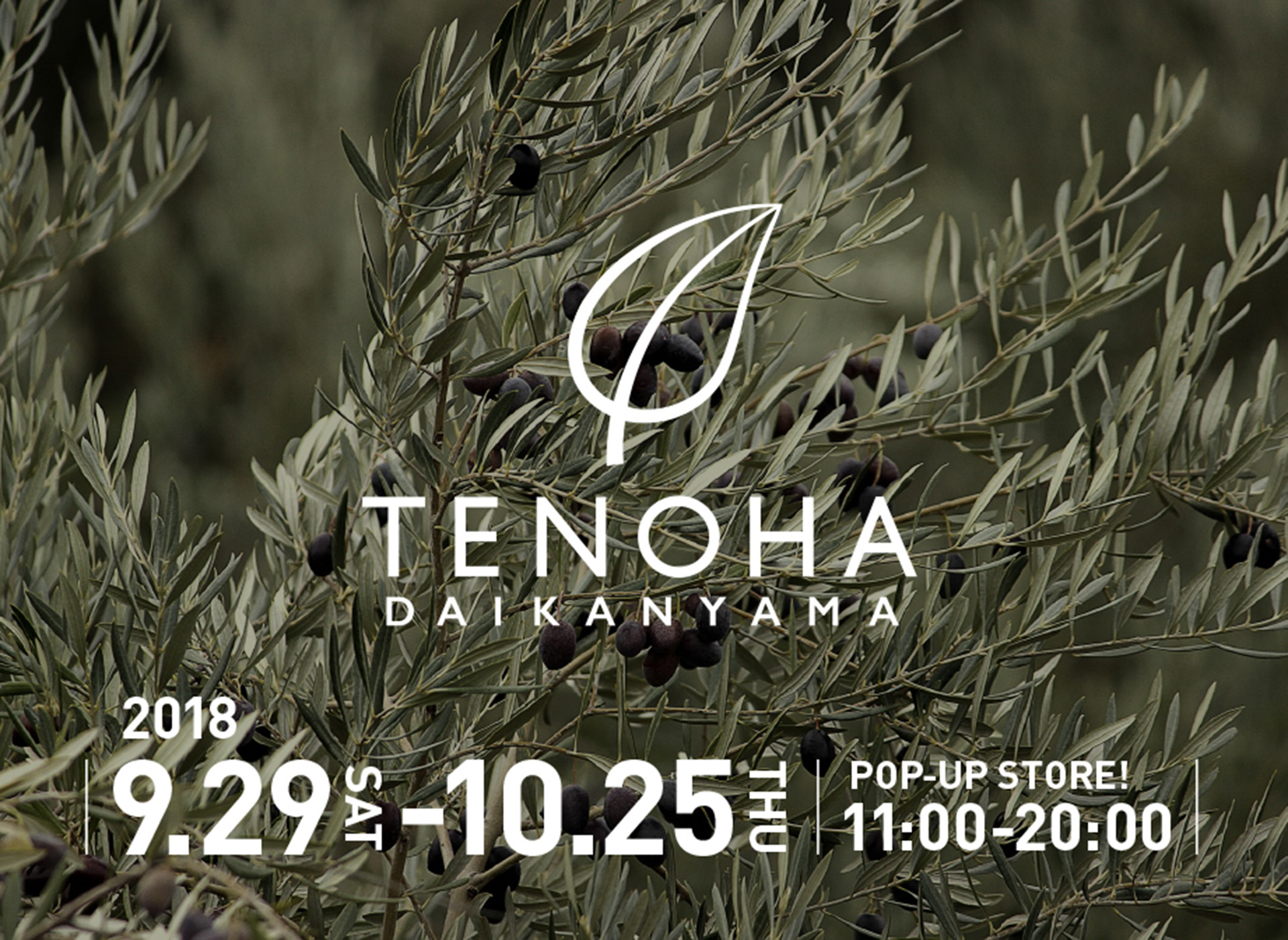 Pop-up store banner TENOHA logo on Olives